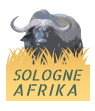 Sologne Africa by Cartouches Sologne
