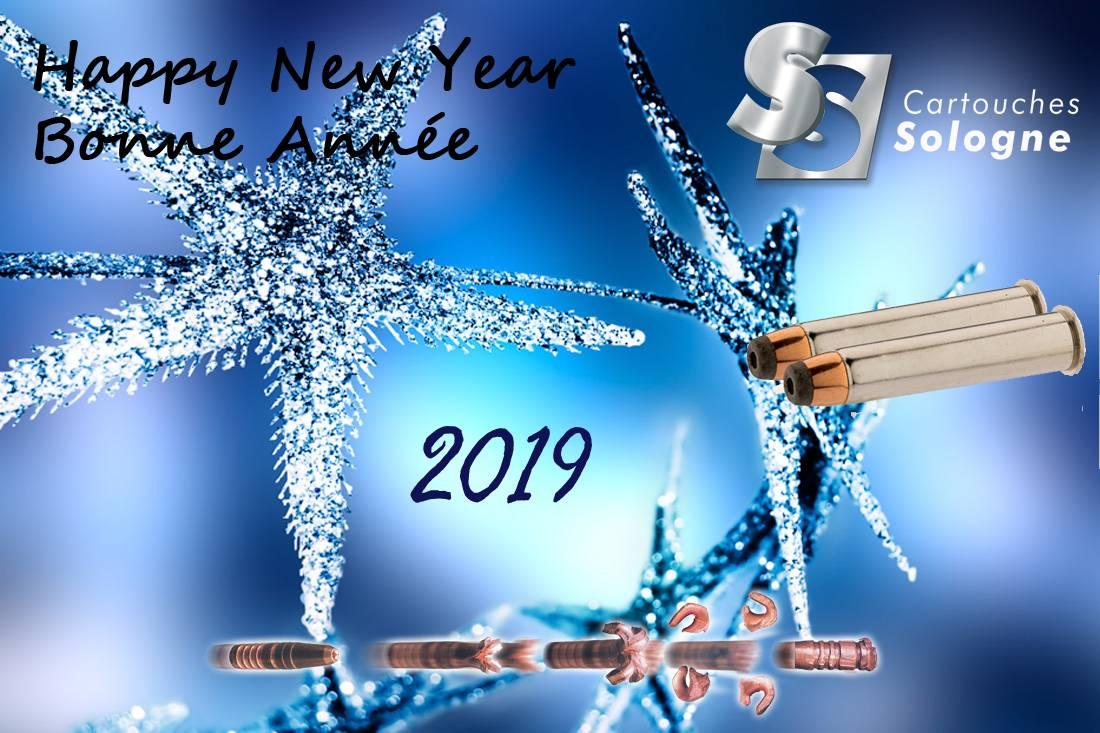 Bonnée Année 2019